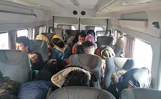 33 Kaçak göçmen daha yakalandı!