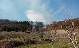 İnegöl'de orman  yangını!