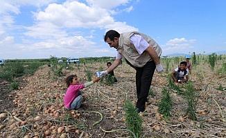 Mevsimlik tarım işçileri ve çocuklarınasüt dağıtıldı