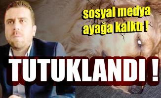 Köpeğe tecavüz iddiasında Volkan Uzun tutuklandı