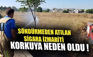 Sigara izmariti yangın çıkardı, Bursa Paşaçiftliği tehlike atlattı