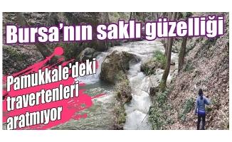 Bursa'da Maksem Deresi, tabiat parkı olarak tescil bekliyor!