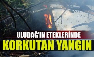 Bursa Uludağ'ın eteklerinde korkutan yangın