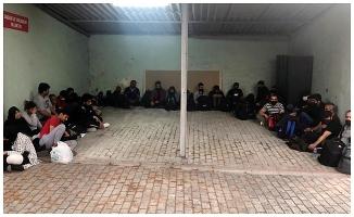 Bağ evinde 32 kaçak göçmen yakalandı