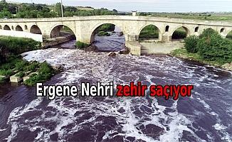 Yıldız Dağları'ndan berrak doğan Ergene Nehri, Trakya'da zehir saçıyor