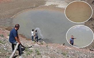Kuraklık sebebiyle gölette can çekişen balıklara can suyu verdiler