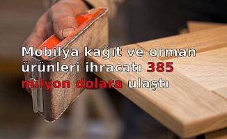 Mobilya kağıt ve orman ürünleri ihracatı 385 milyon dolara ulaştı