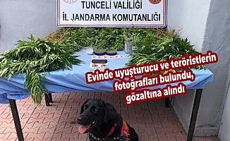 Evinde uyuşturucu ve teröristlerin fotoğrafları bulundu, gözaltına alındı