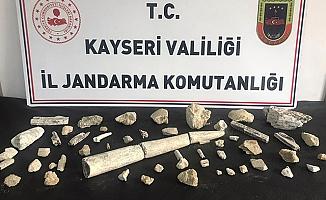 Kayseri'de fildişi fosili ve fosil kalıntıları ele geçirildi