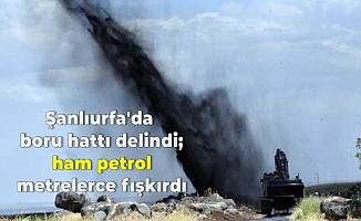 Şanlıurfa'da boru hattı delindi; ham petrol metrelerce fışkırdı