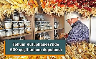 Bursa'da kurulan Tohum Kütüphanesi'nde 600 çeşit tohum depolandı