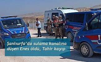 Şanlıurfa'da sulama kanalına düşen Enes öldü, Tahir kayıp