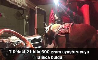 TIR'daki 21 kilo 600 gram uyuşturucuyu Talisca buldu