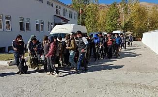 Bitlis'te minibüste 48 kaçak göçmen yakalandı