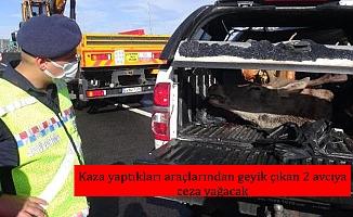 Kaza yaptıkları araçlarından geyik çıkan 2 avcıya ceza yağacak