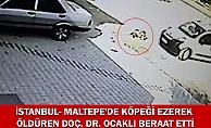 MALTEPE'DE KÖPEĞİ EZEREK ÖLDÜREN DOÇ. DR. OCAKLI BERAAT ETTİ