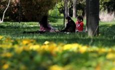 Bursa'da bahar coşkusu